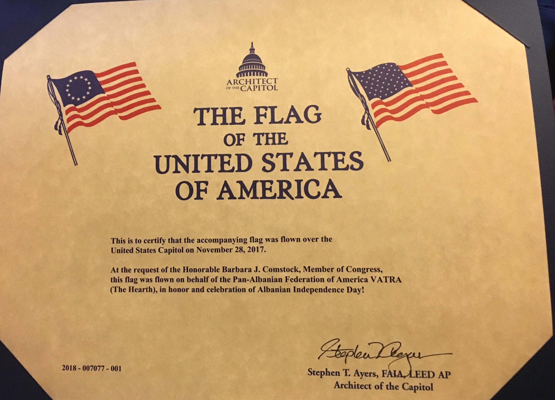 1 The flag